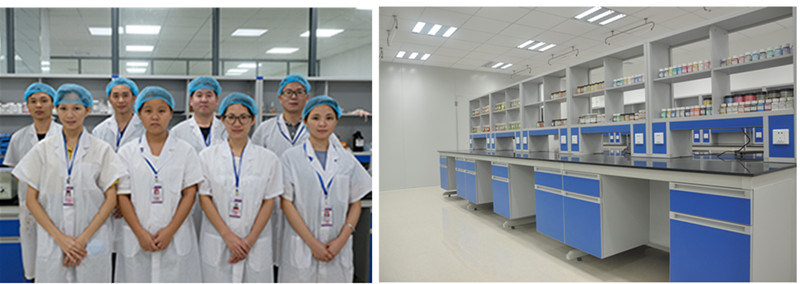 Bause R&D team and Lab